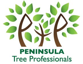 Peninsula Tree Professionals