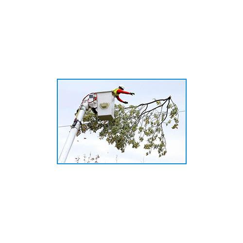 SWMS Template-_0284_Work-Near-Overhead-Powerlines